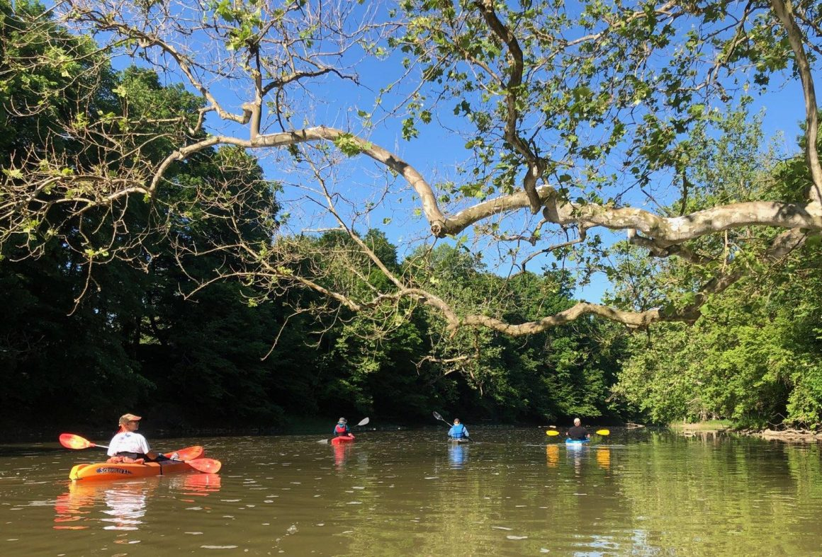 Paddling our local rivers, an escape into nature and time