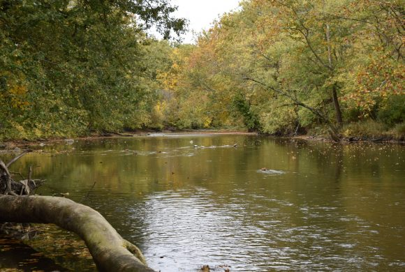 New Nature Preserve Protects the White River and Indiana History